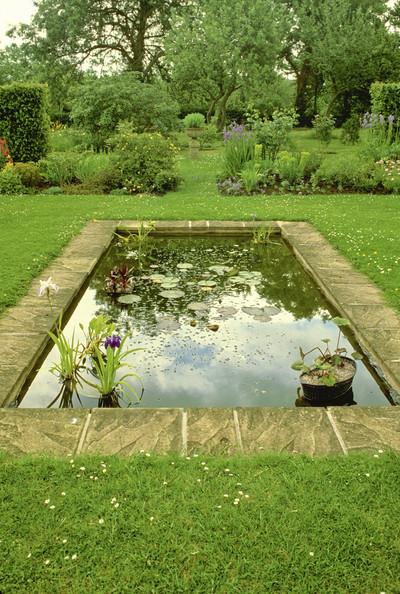 Дизайн пруда в частном доме