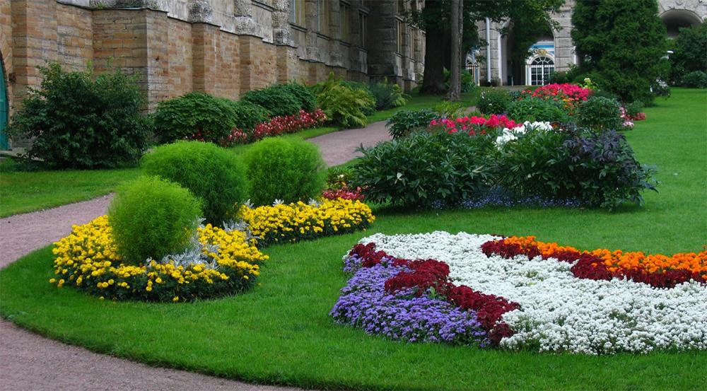 Дизайн цветников и газонов фото попросили