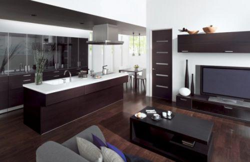 Кухни, совмещенные с гостиной